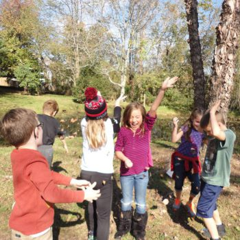 Elementary Fall